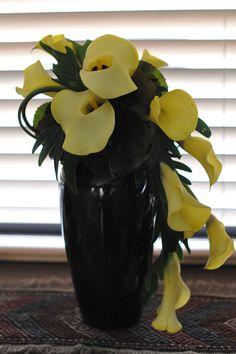 Calla lily, Philodendron cv.kookaburra, Galax
