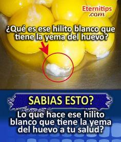 Beneficios del Huevo QUE NO CONOCIAS   Eternitips