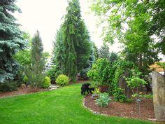 Front Garden Landscape   Flickr - Photo Sharing!