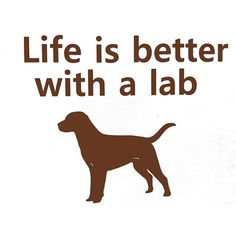Dog Lab Lover Life is better with a lab chocolate by sookiedog, $4.50
