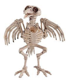 Crow Skeleton Figurine #zulily #zulilyfinds