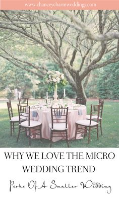 We've been giving the topic of micro weddings a lot of thought for our clients and those around the world who are affected by the coronavirus. Elopement Reception, Wedding Reception Design, Wedding Card Design, Wedding Designs, Wedding Trends, Wedding Tips, Wedding Vendors, Wedding Planning Checklist, Alternative Wedding