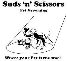 suds 'N' Scissors Pet salon in Calgary is one of the best pet grooming salon in Victoria. It provides you with services like Grooming Salon, Cat Grooming, Professional Services, Calgary, Scissors, Dog Training, Your Pet, Victoria, Pets