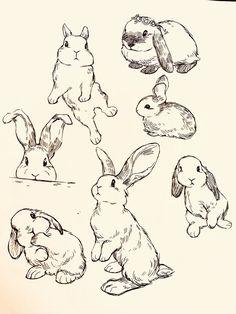 Inktober 2018 on Behance Cute Animal Drawings, Animal Sketches, Cute Drawings, Drawings Of Animals, Cute Animal Tattoos, Bunny Sketches, Art Drawings Sketches Simple, Hase Tattoos, Bunny Tattoos