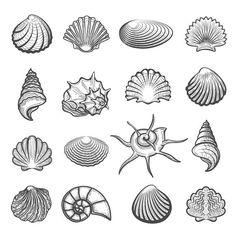 Hand drawn sea shell set Мини Татуировки, Маленькие Татуировки, Татуировки На Тему Океана, Морское Тату, Татуировка Корабль, Морские Татуировки, Татуировки Медведя, Красивые Татуировки