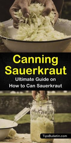 Canning Sauerkraut - Ultimate Guide for Fermenting and How to Can Sauerkraut Recipe For Making Sauerkraut, Canning Sauerkraut, Homemade Sauerkraut, Sauerkraut Recipes, Fermentation Recipes, Canning Recipes, Canning Tips, Canning Food Preservation, Preserving Food