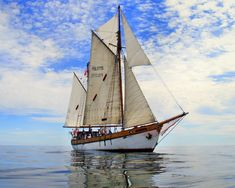 "The Polish gaffel ketch ""Bryza H"". I was a crew member of this beauty!"