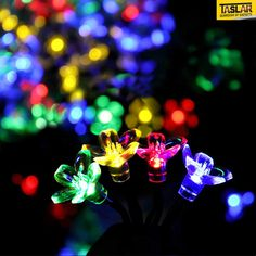 Solar-powered String Lights for Diwali, Christmas, weddings, parties and other events are a great way to decorate your home or office while saving on electricity bills and preserving nature by reducing carbon-based energy consumption. Peach Blossom Flower, Peach Blossoms, Flower Fairy Lights, Solar Power, Solar Energy, Diwali Lights, Solar Led String Lights, Dusk To Dawn, Eco Friendly