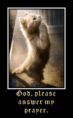 Glitter Graphics: the community for graphics enthusiasts!