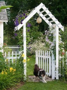 Fence in Fido Keeping furry family members safe should be a high priority when you landscape your backyard. Make sure you have a sturdy, escape-proof fence that is tall enough to keep your dog from jumping over. Also, make sure gates can be locked. Never leave your dog unattended for long periods of time. Here, a vinyl, gnaw-proof picket fence keeps Fido confined when needed.