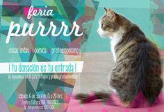 Feria Purrrrr- 6 de Abril 2013 #cats #flyers