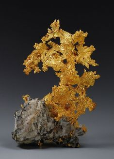 Gold from the Eagle's Nest Mine, Placer Co., California, USA