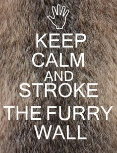 I thought about having a furry wall in my classroom to help calm kids down, then I got to thinking about how they'd put all kinds of gross stuff on it and ruin it.