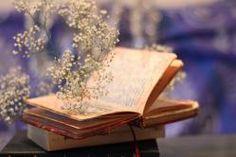Que otros se jacten de las páginas que han escrito; a mí me enorgullecen las que he leído.