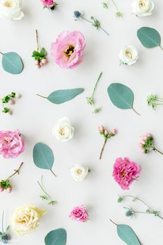 Beautiful colorful f Bunch Of Flowers, Pretty Flowers, Colorful Flowers, Pink Flowers, Fresh Flowers, Flower Petals, Flower Background Design, Flower Background Wallpaper, Beauty Background