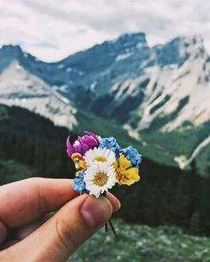 No matter how small. #smallbouquet #mountainviews #flowerpower