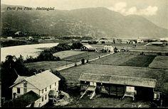 Buskerud fylke Flå kommune i Hallingdal FLAA. Næroversikt flere gårder ved elva. Utg Ødegaard. Ubrukt 1915