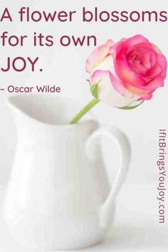 Oh joy! Quotes to help you bring joy to your day. Inspirational daily quotes for reminders to choose joy and make life better. A flower blossoms for its own joy (Oscar Wilde) #quotes Joy Quotes, Uplifting Quotes, Daily Quotes, Life Quotes, Inspirational Quotes, Choose Joy, Oscar Wilde, Blossom Flower, Mindful Living