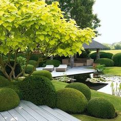 The post appeared first on Garten ideen. Boxwood Landscaping, Modern Landscaping, Backyard Landscaping, Garden Pool, Lawn And Garden, Formal Gardens, Outdoor Gardens, Formal Garden Design, Patio Plants