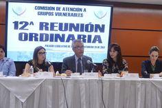 Los Grupos Vulnerables tendrán voz en la creación de leyes: Luis F. Mesta