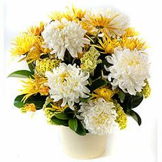 Chrysanthemum | The Flower Factory
