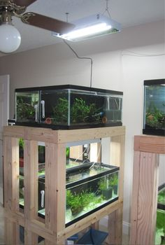 DIY - Build an Aquarium Rack, perfect for my snakies