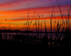 Island Grass Sunset on Long Beach Island NJ by LeahValentinePhoto, $25.00
