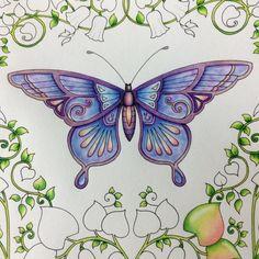 WIP - Johanna Basford - Magical Jungle - Butterfly <3