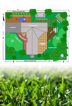 Need help determining what should go in your landscape? Find tips here.