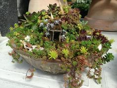 Fairy and Miniature Table Top Gardens PDF by PinkyDinkyDesigns