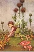 fairy tale fairies - Bing Images