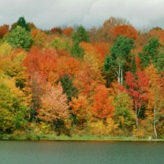 Autumn ~ my favorite time of year !!!!