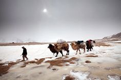 This is one in a series of dispatches sent from Afghanistan's Pamir Mountains by photographer Matthieu Paley.