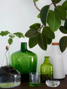 A shoot Tina Hellberg created Green Interiors with Idha Lindhag for Elle Interiör.