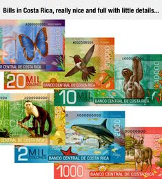 World's Most Beautiful Currency