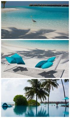 View from Paradise - Maldives Outdoor Furniture, Outdoor Decor, Maldives, Hammock, Surfboard, Paradise, Travel, Color, The Maldives