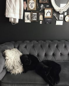 Dark Home Decor, Goth Home Decor, Natural Home Decor, Gothic House, Victorian Gothic, Heading Design, Otaku Room, Cute Room Ideas, Welcome To My House