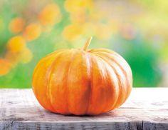 #Pane di #zucca #Halloween
