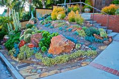 Encinitas Succulent Garden by plantmanbuckner, via Flickr