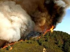 Tipping towards a dangerous hothouse state, children facing greater health risks to climate change, plastics releasing greenhouse gases, and the possible relationship between tornadoes and Arctic sea ice. It's What's Up in Climate Change. Wildland Firefighter, Climate Change Meaning, Fire Tornado, Siberia, Santa Barbara County, Forest Service, Park Service, Camping, Backpacking