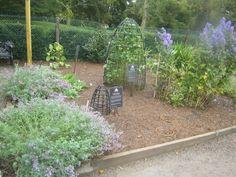 The Poison Garden at Blarney