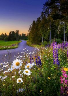 Beauty of Nature. Relax with this nature photo. Beautiful World, Beautiful Places, Beautiful Pictures, Beautiful Nature Scenes, Beautiful Scenery, Landscape Photography, Nature Photography, Photography Flowers, Science And Nature