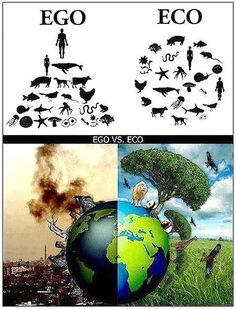 WE ARE PART OF THE ECOSYSTEM. We belong to the earth, the earth does not belong to us.