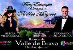 El Diario de All México Pass 04. 10. 2014