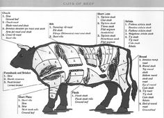 44c830405a28c41f19969c7428273b8e beef cuts chart cuts of beef 11 best beef cuts chart images on pinterest cooking recipes