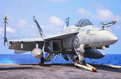 """Boeing F/A-18 Super Hornet of VFA-143 """"Pukin Dogs"""" Strike Fighter Squadron, aboard the USS Dwight D. Eisenhower (CVN-69)."""