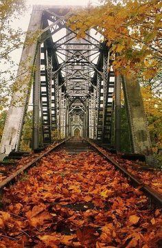 'Union street bridge in Salem, Oregon before they turned it into a footpath' - Vanarie Deister Graves New Hampshire, Le Vermont, Salem Mass, Road Trip, Salem Oregon, Portland Oregon, Night In The Wood, Vancouver, Oregon Travel