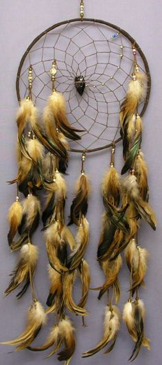 native american indians dream catchers