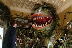 Little Shop of Horrors' Audrey the flesh eating plant Best Horror Movies, Great Movies, Rock Roll, Comedia Musical, Alien Plants, Watch The Originals, The Rocky Horror Picture Show, Joseph Gordon Levitt, Little Shop Of Horrors