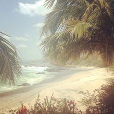 Good morning Nicaragua #beach #waves #palmtree #nicaragua #nica2013 #eidonsurf #eidon